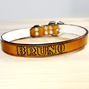 Leather Dog Collar with Name