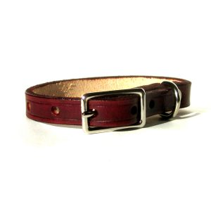 Small Dog or Puppy Leather Collar